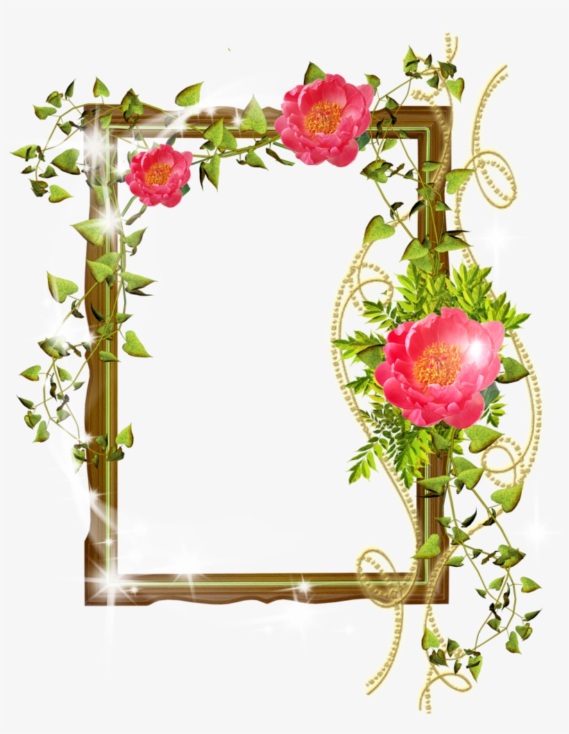 Flower Frame Photoshop Background Png - Photoshop Background