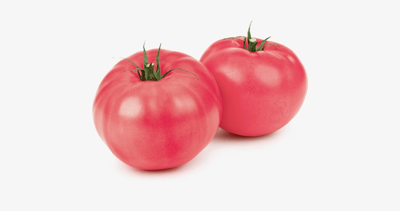 Curio Tomatoes Loose Product Image - Mucci Farms Ltd., transparent png #1531440