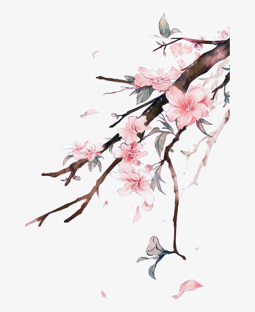 Disegni Fiori.Find This Pin And More On Png By Yukivermillion Sfondi Iphone