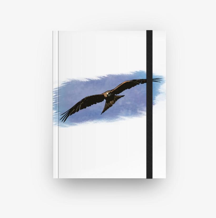 Caderno Watercolor Predator De Felipe Gomesna - Golden Eagle, transparent png #1589447