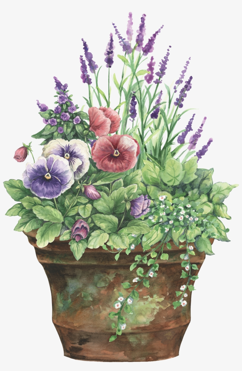 Floral Planter - Rustic Flower Pot Clipart, transparent png #164618