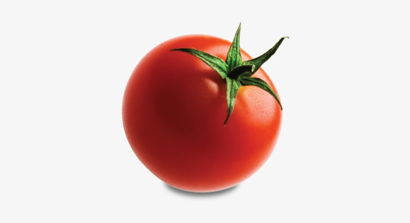 Tomato - Tomato With No Background, transparent png #166375