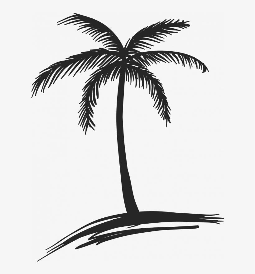 Drawing Coconut Arecaceae Tree Watercolor Painting - Beach Palm Trees Drawings, transparent png #169731