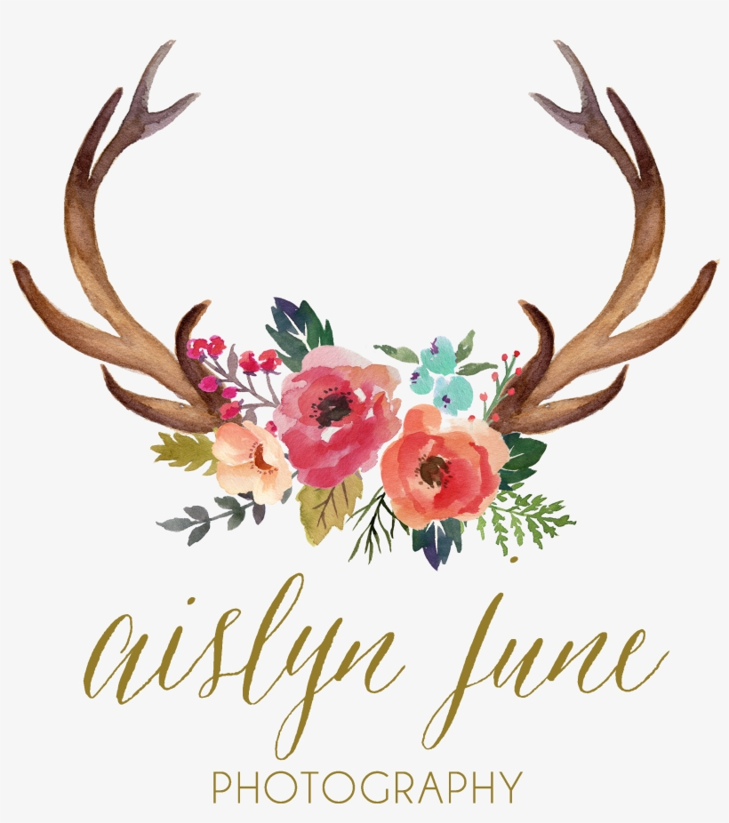 Antler Watercolor Painting Clip - Deer Antlers And Flowers, transparent png #169901