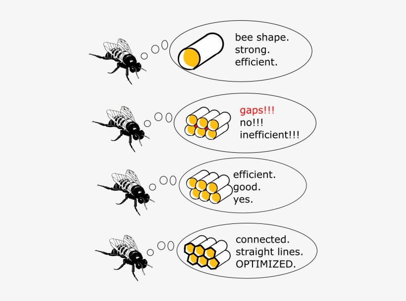 Why Beehives Are Hexagons - Bee Shape Strong Efficient, transparent png #1606296