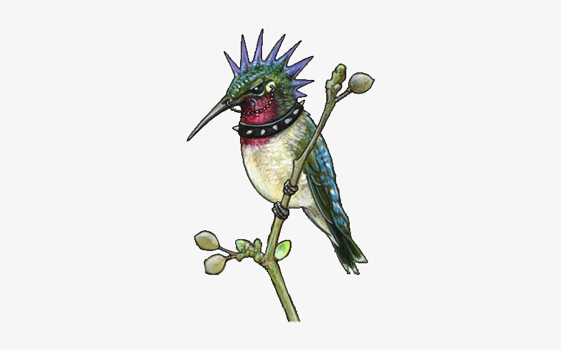 Colored Hummingbird Tattoos Design - Hummingbird Tattoo Flash Art, transparent png #1613981