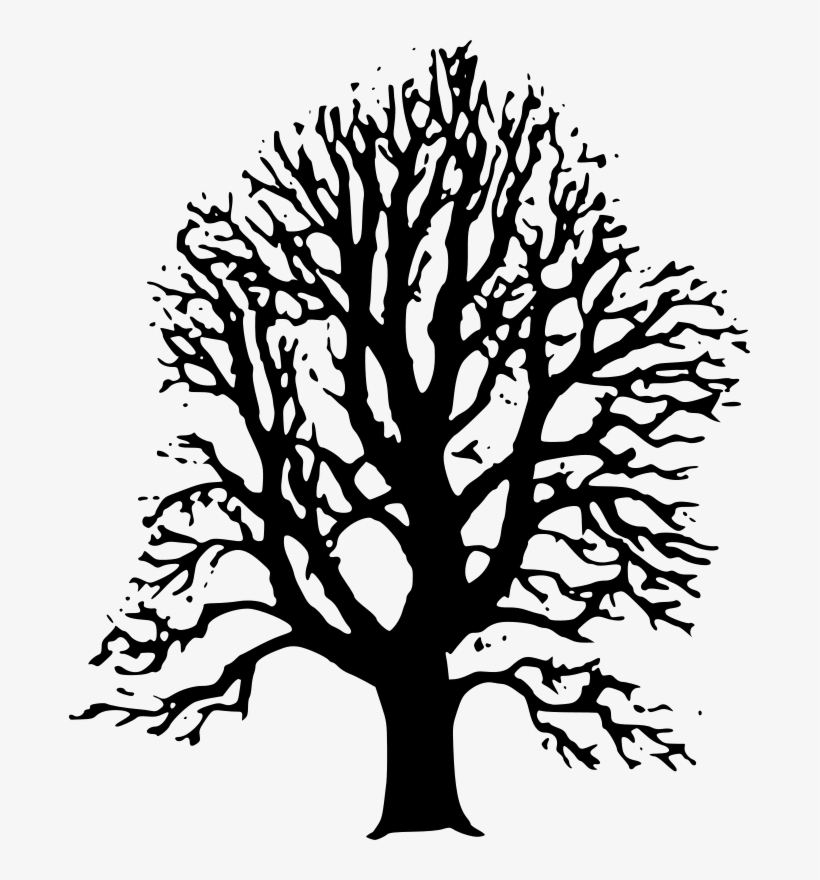 Black Trees Cliparts - Linden Tree Black And White, transparent png #1615784