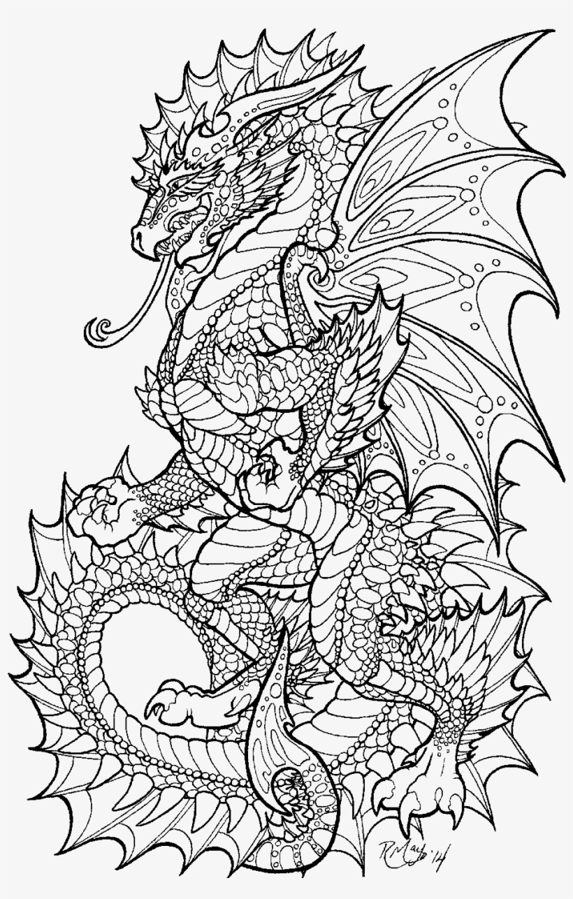 Adult Colouring Pages Dragon - Free Transparent PNG ...