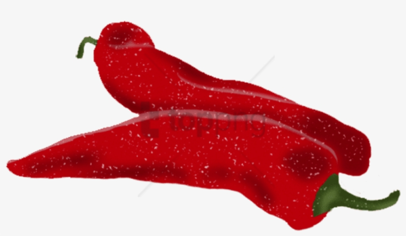 Red Pepper - Bird's Eye Chili, transparent png #1643803