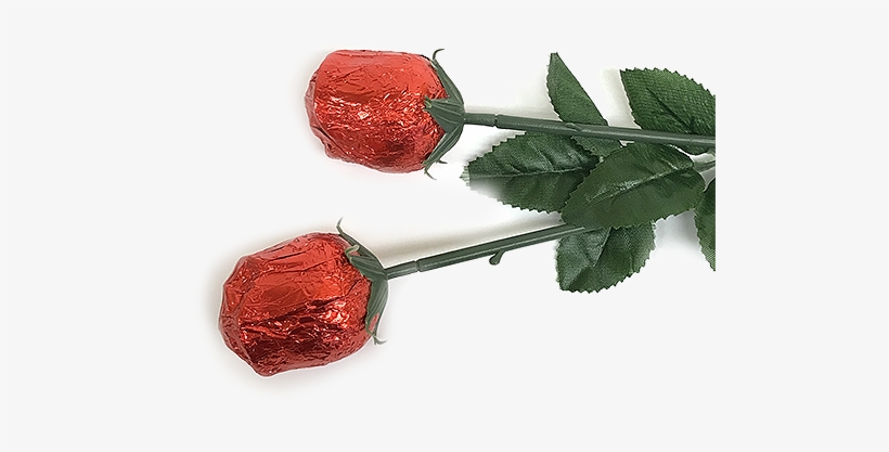 Red Foiled Belgian Chocolate Color Splash Roses For - Belgian Milk Chocolate Roses Png, transparent png #1645584