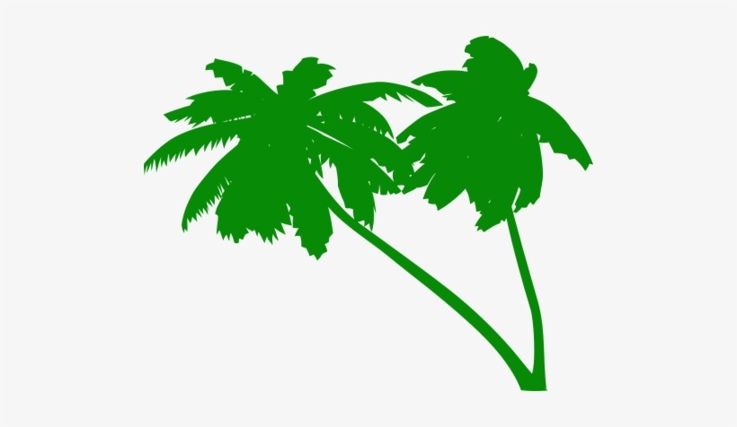 Palms,coconut Tree,coconut - Green Palm Tree Vector, transparent png #176322