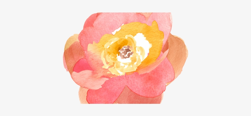 Best Wild Flowers - Watercolor Orange Flowers Clip Art, transparent png #179166