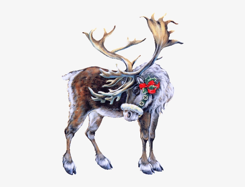 Santa Claus's Reindeer - Tubes Noel, transparent png #1700054
