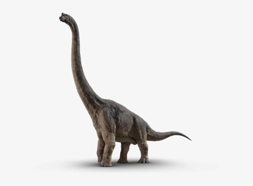 Brachiosaurus - Jurassic World Fallen Kingdom Dinosaurs, transparent png #1711540