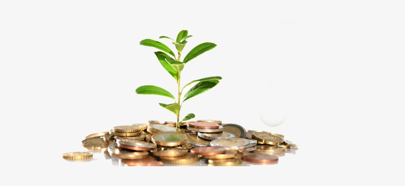 Money Tree Png - Low To Mid-middle Class Moving Up, transparent png #1735612