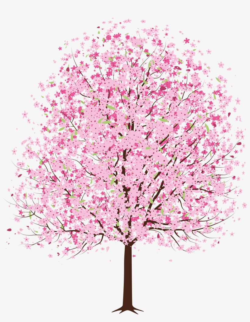 Pin Spring Clipart Png - Japanese Cherry Blossom Tree Transparent, transparent png #1764021