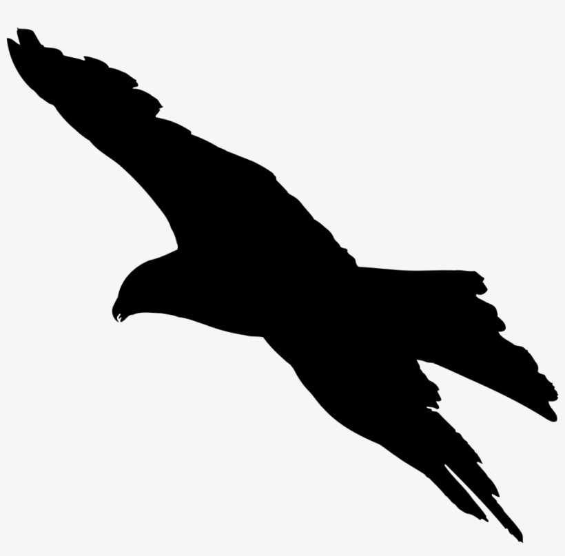 Eagle 7 Silhouette - Silhouette Of A Bird Flying, transparent png #1764357