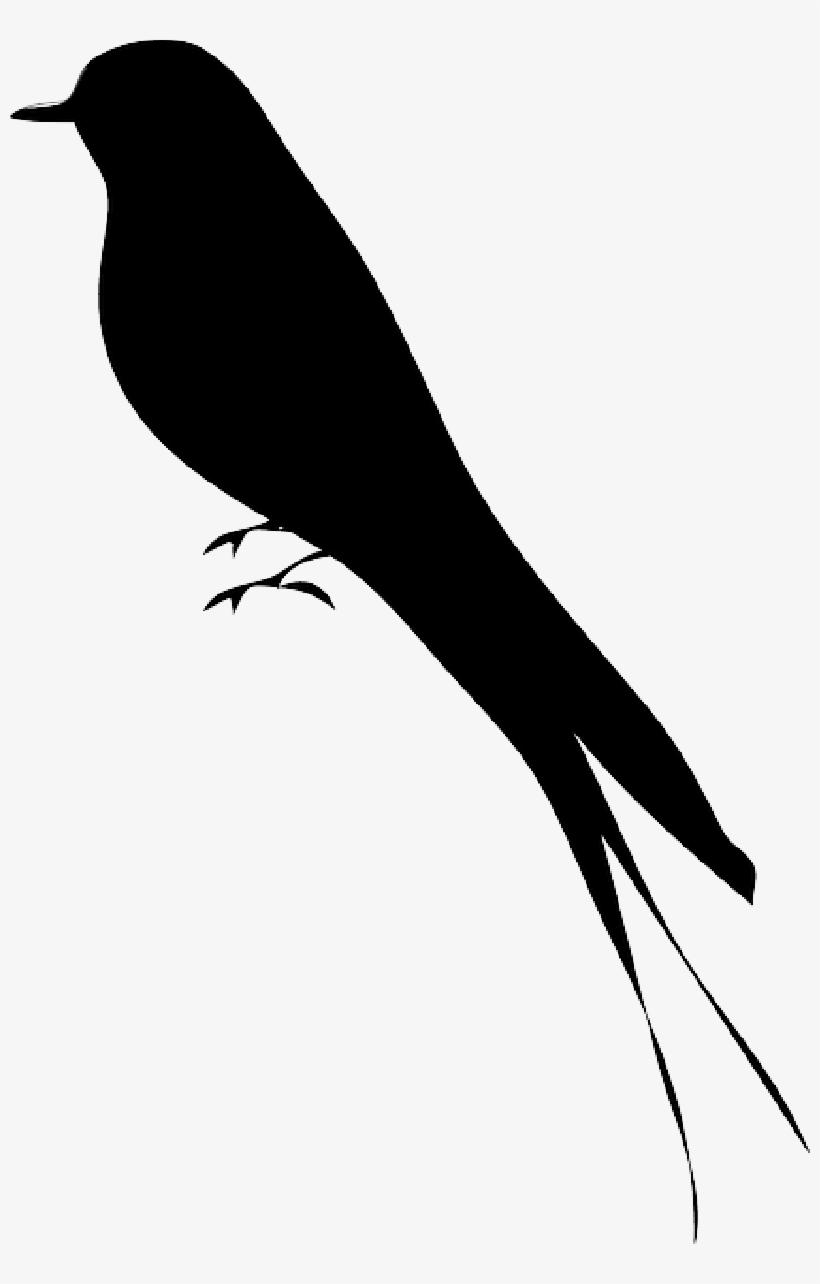 Silhouette, Tree, Cartoon, Birds, Bird, - Bird Silhouette, transparent png #1766324