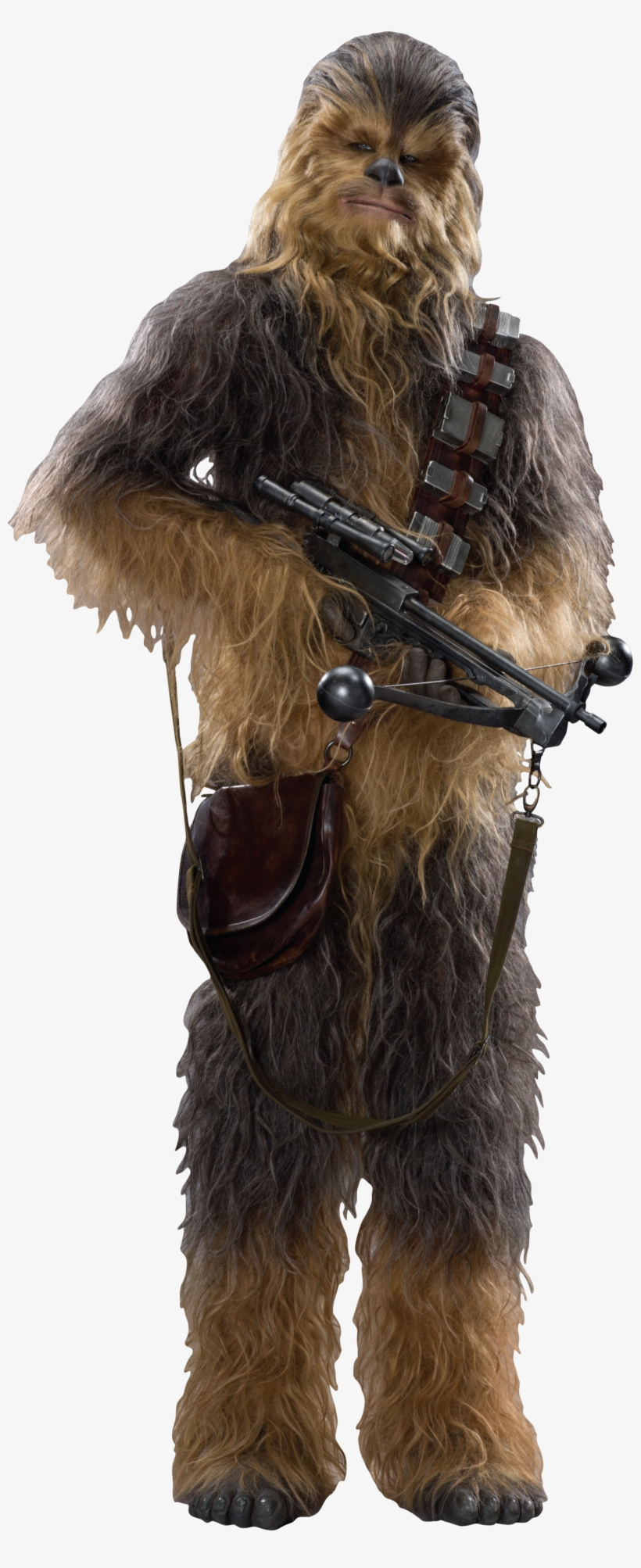 Banner Royalty Free Download Image Tfa Fathead Png - Chewbacca Star Wars Vii Cardboard Cutout Standup, transparent png #1782691