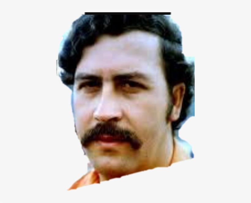 Report Abuse - Pablo Escobar, transparent png #1790181