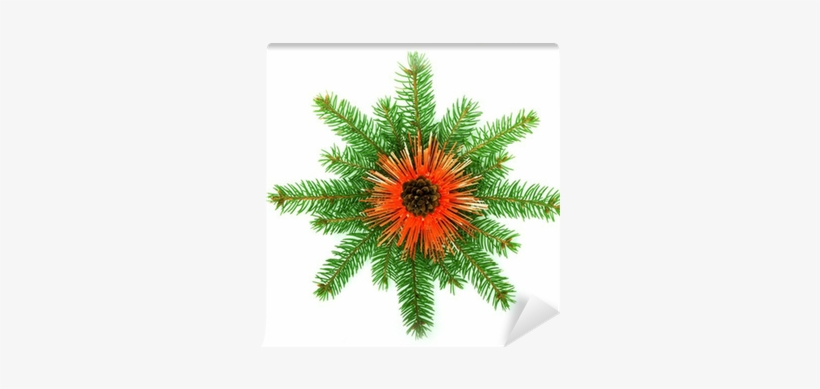 Snowflake Made From Christmas Tree Branches Wall Mural - Christmas Day, transparent png #1795030