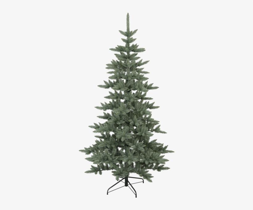 Christmas Tree Royal Blue - Balsam Fir Christmas Tree, transparent png #1795291