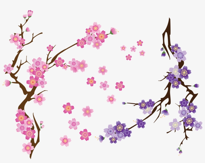 Cherry Blossom Drawing Clip Art - Branch Of Cherry Blossom Png, transparent png #188071