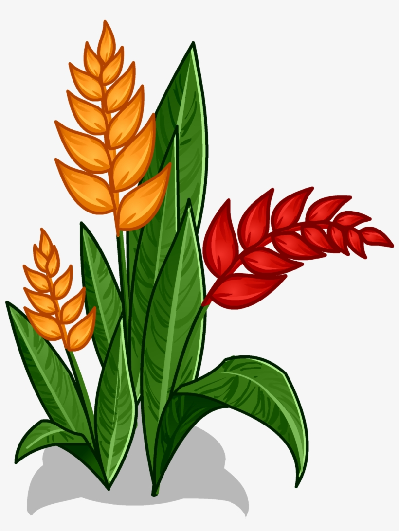 Rainforest Flowers Clipart At Getdrawings - Amazon ...