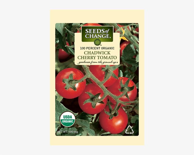 Organic Chadwick Cherry Tomato Seeds - Seeds Of Change Organic Red Cherry Tomato Seeds, transparent png #1808931