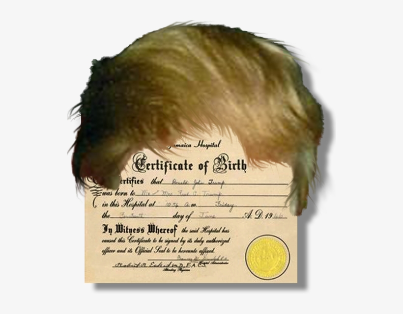 Raising The Bar No Donald Trump Birth Certificate Free
