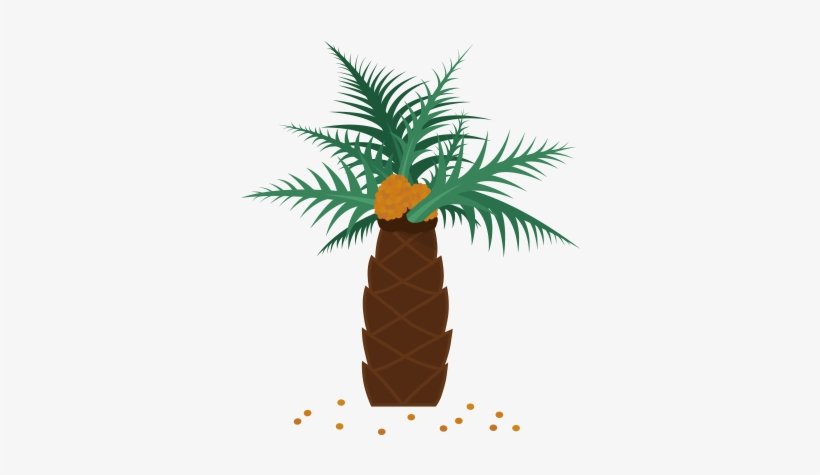 Real Palm Tree Png Which Everyday Products Contain - Palm Oil, transparent png #1836808