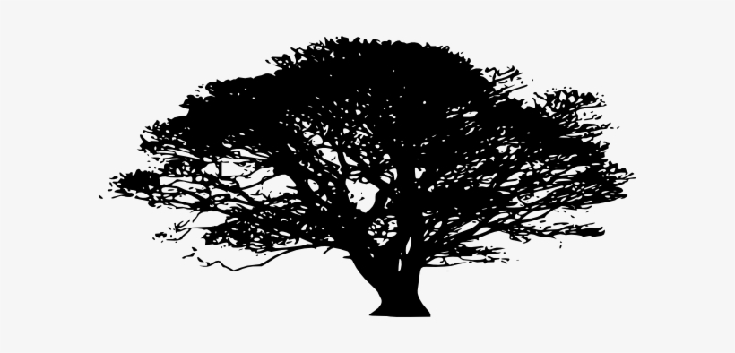 African Clip Art At - Oak Tree Silhouette Png, transparent png #1848475