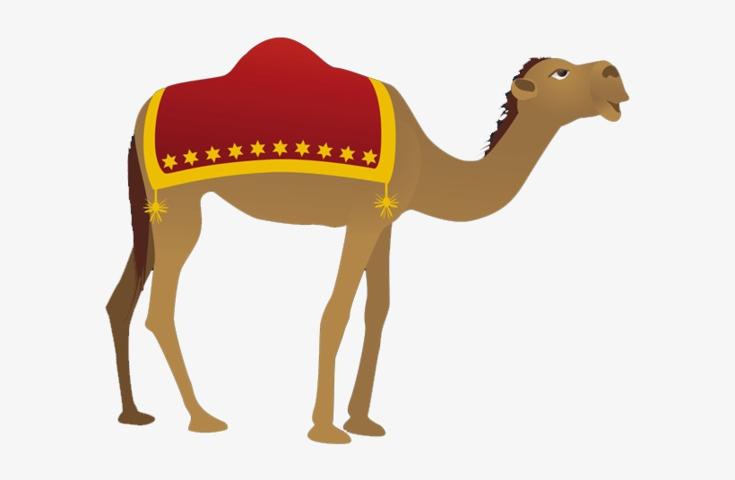 Clip Arts Related To - Camel Clipart, transparent png #1855074