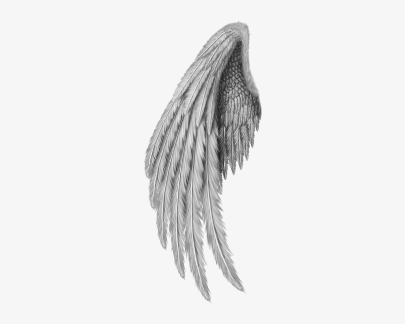 Angel Wings Freetoedit - Gold Angel Wings Png, transparent png #1857651