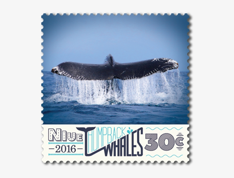 Product Listing For Niue 2016 Humpback Whales - Humpback Whale, transparent png #1859592