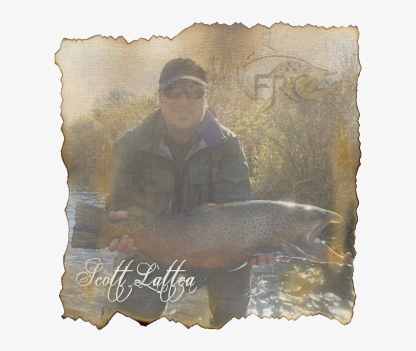 Scott Lattea - Fly Rod Chronicles With Curtis Fleming, transparent png #1889764
