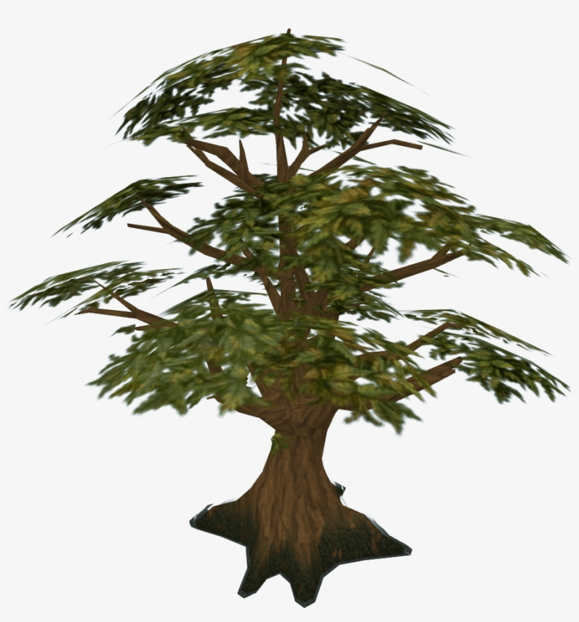 Svg Transparent Stock Bonsai Drawing Windswept Tree - Oak Tree Runescape, transparent png #191097
