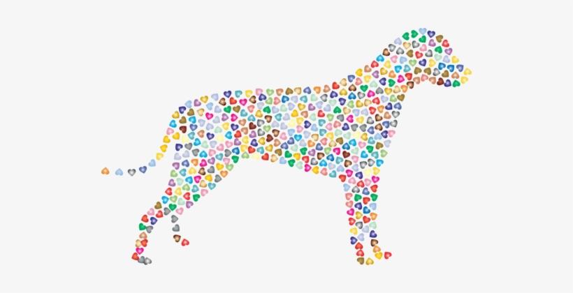 Bernard Golden Retriever Dobermann Border Collie Dalmatian - Dog, transparent png #199150