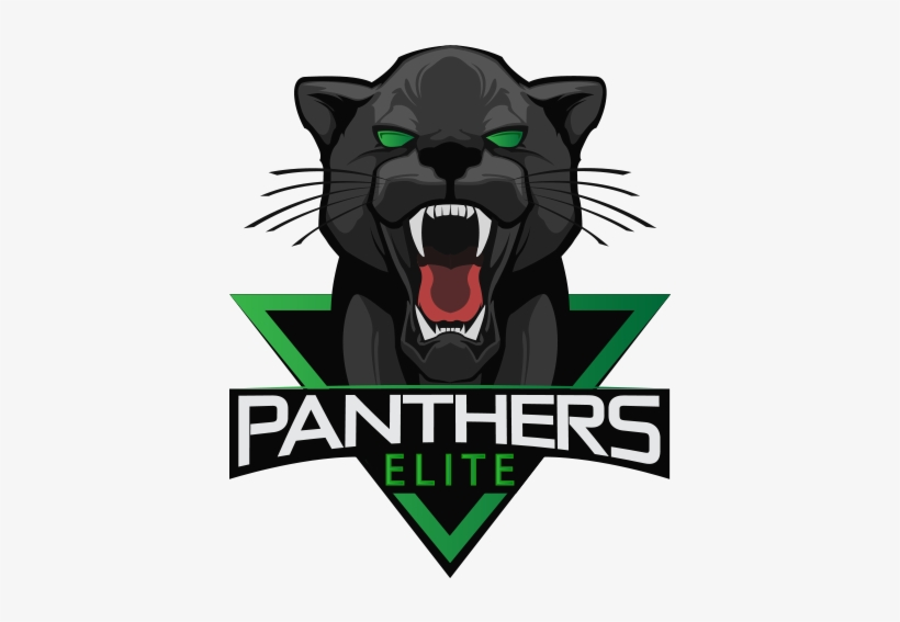 Team's Logo Panthers Elite - Panthers Esports Fifa, transparent png #199427