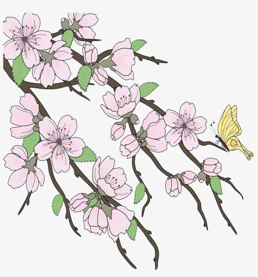 Cherry Blossom Drawing Branch - Beautiful Drawings Branch, transparent png #199690