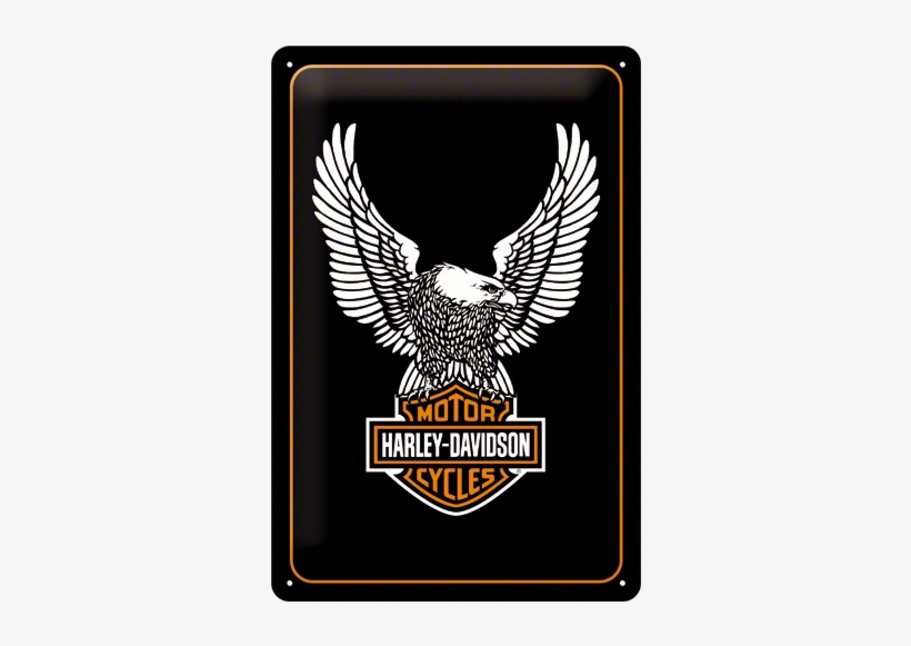 Posters And Signs - Harley Davidson Eagle Logos, transparent png #1951634