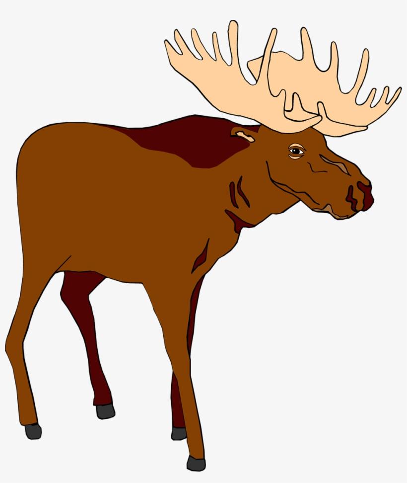 Transparent Moose Clipart
