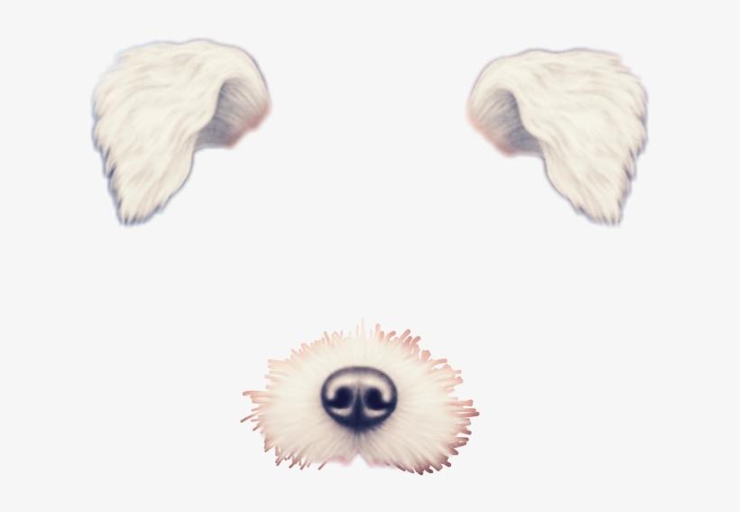 So Cute Omg Dog Filter Snapchat Cute Kawaii Interesting