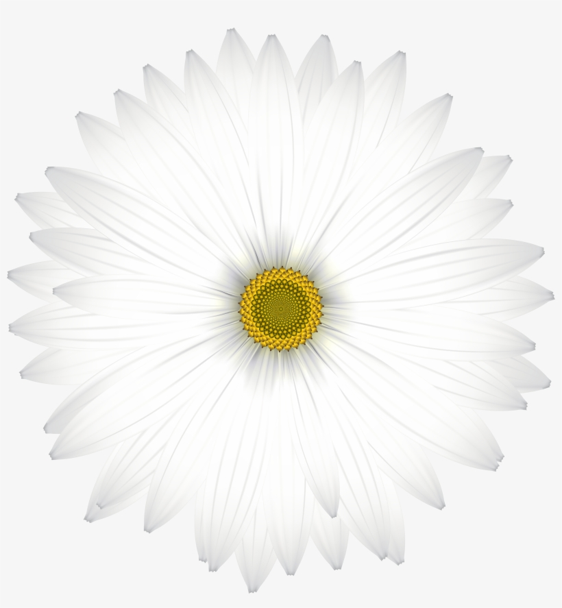 White Flower Clipart Png, transparent png #1994466
