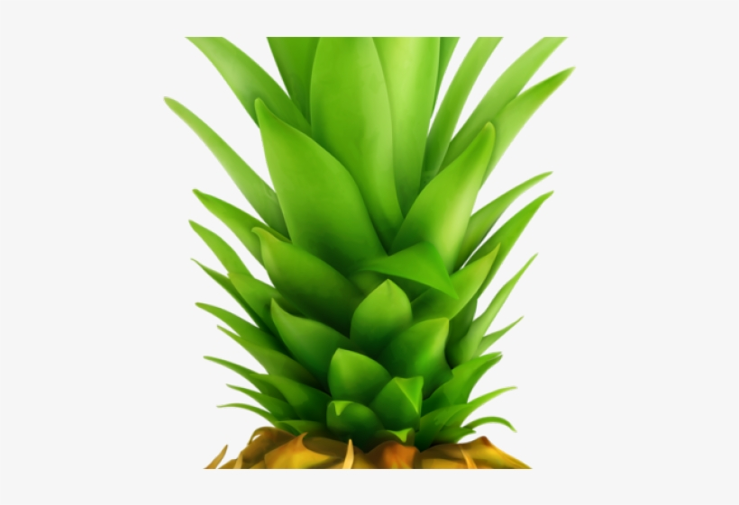 Pineapple Clipart Green Fruit - Pineapple Top - Free ...