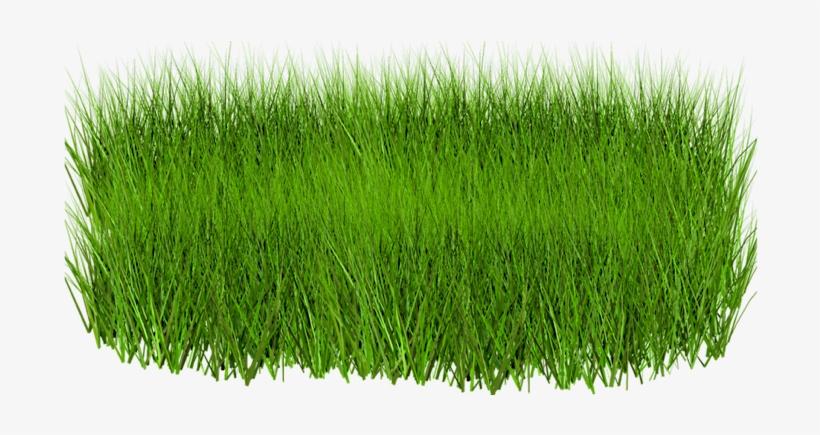 green grass png - 820×435
