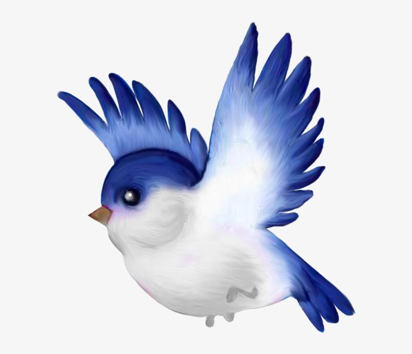 Oiseaux Birds Png Pinterest Oiseauxbirdspng Bird Cartoon Free