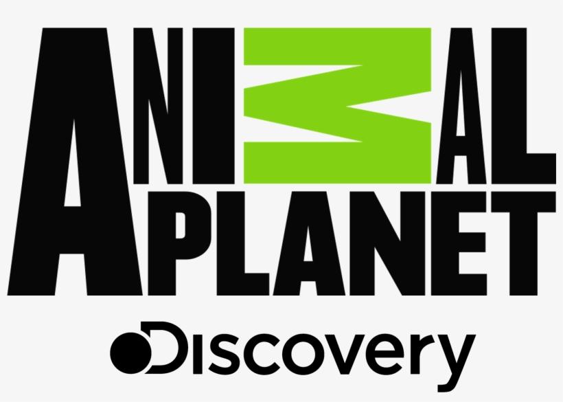 Animal Planet - Animal Planet Logo Png, transparent png #23613