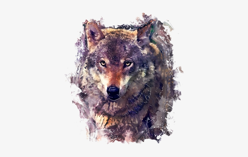 Click And Drag To Re-position The Image, If Desired - Wolf Watercolor Painting, transparent png #25545