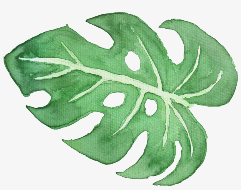 Tropical Leaf Watercolor Png - Watercolor Painting, transparent png #26571